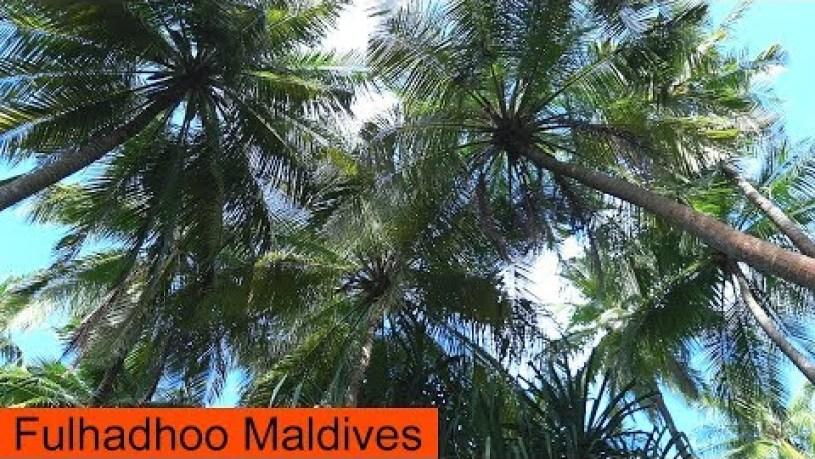 Fulhadhoo Beach Maldives