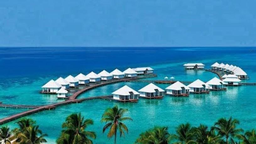 Banana Reef Maldives Wikipedia