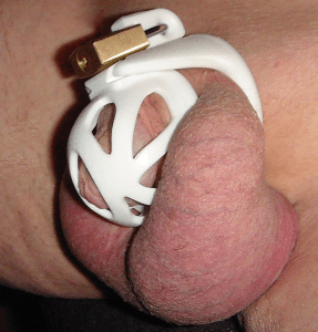 lion penis in ghost chastity device