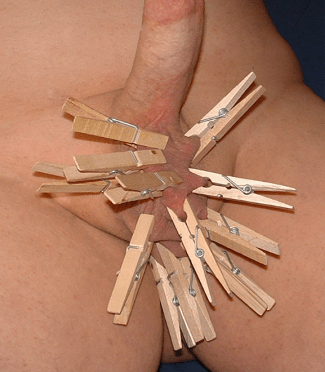 clothespins on Lion's balls.