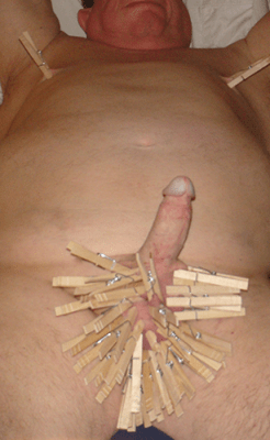 clothespins on lion