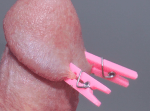tiny clothespins on penis head