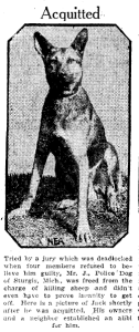 Police dog murderer