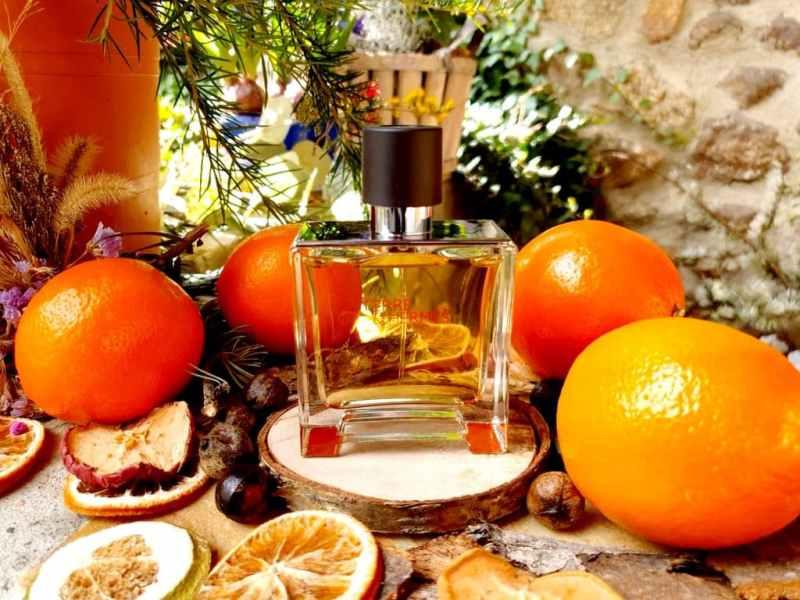 Terre d'hermès Parfum - test & avis
