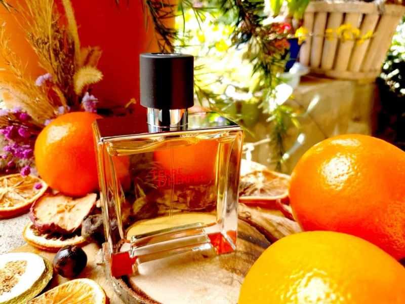 avis sur Terre d'hermès Parfum