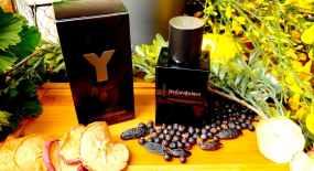 Y Le Parfum YSL
