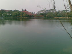 Danau di UI