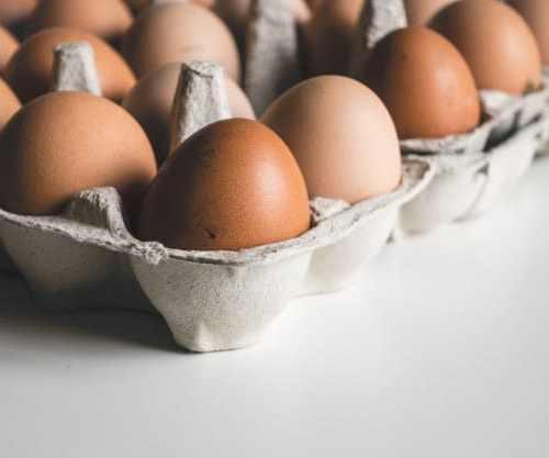 Saiba como incluir ovos na sua alimentação