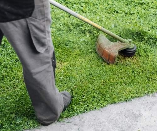 cortar grama