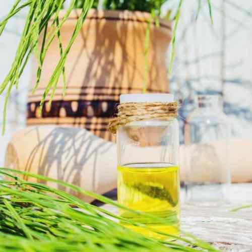 Os benefícios do óleo de linhaça para a saúde