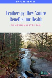 Conscious Living: Ecotherapy How Nature Benefits Our Health