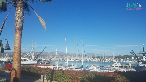 Family Travel: Brophy Bros. Ventura Harbor