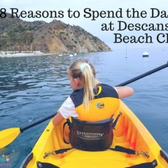8 Reasons to Spend the Day at Descanso Beach Club on Catalina Island