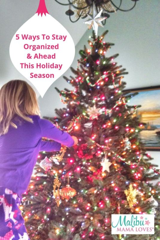 5 Ways To Stay Organized & Ahead This Holiday Season