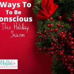5 Ways To Be Conscious This Holiday Season