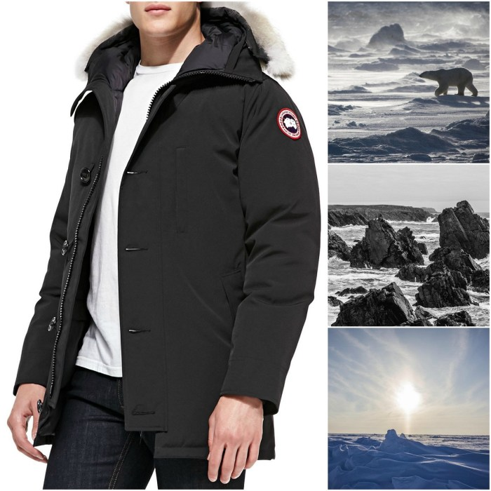 Canada Goose Chateau Arctic-Tech Parka with Fur Hood Jacket