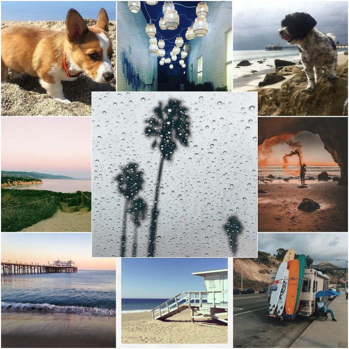 Favorite Malibu Photos of the Day