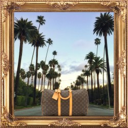 Louis Vuitton Pre-Owned Monogram Canvas Keepall 45 Handbag
