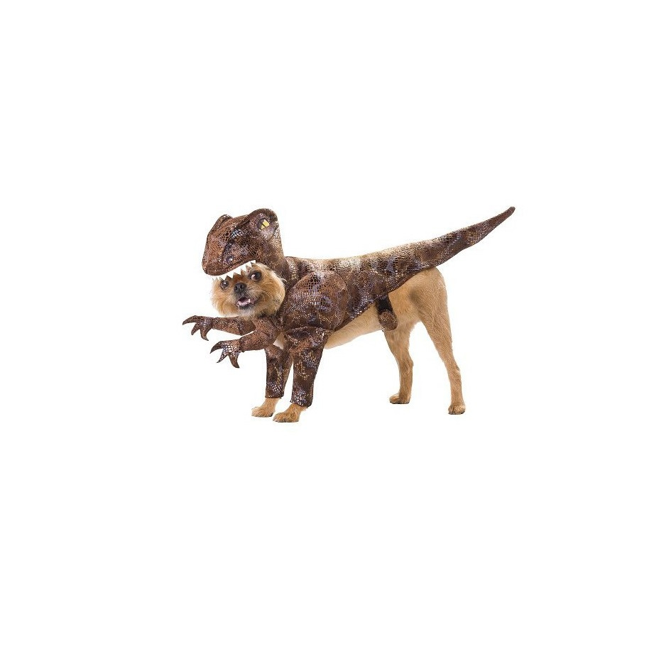 Raptor Pet Dinosaur Dog Halloween Costume
