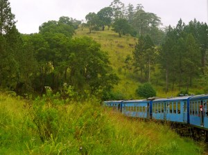 SriLanka Train malindkate