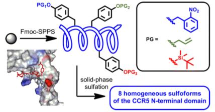 CCR5 Sulfopeptide TOC