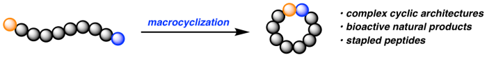 Website research scheme2 macrocyclization