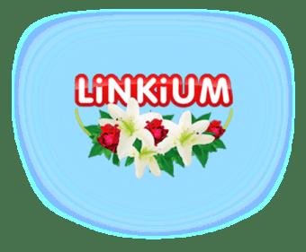 Logo Linkium