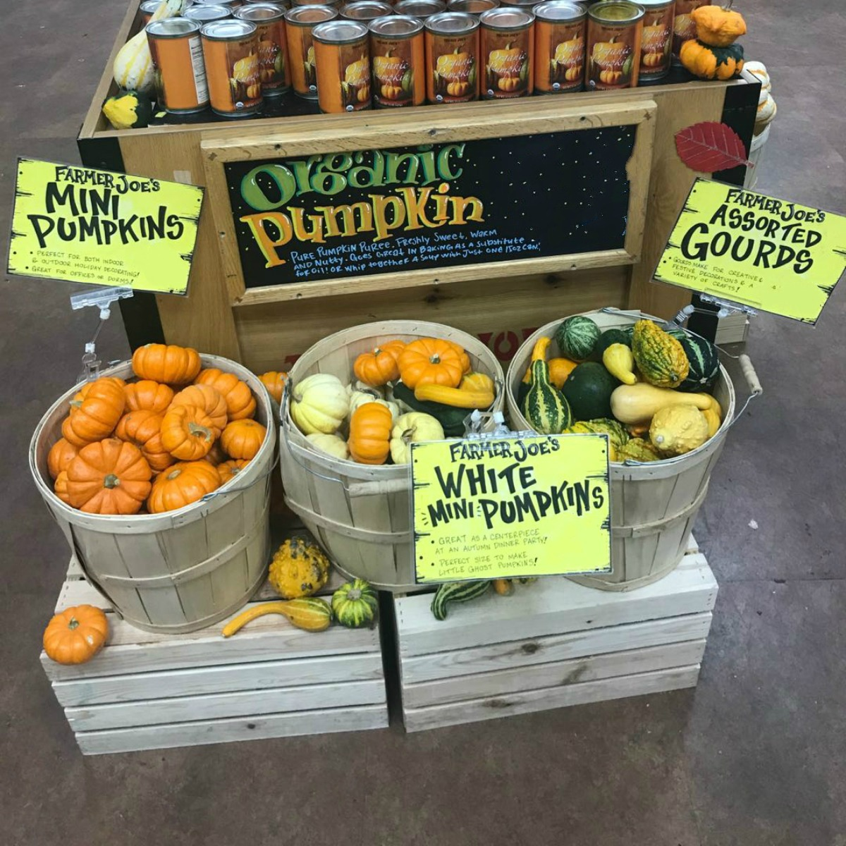 Farmer Joe's Mini Pumpkins / EA