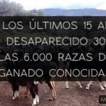 #YoApoyoLasRazasAutóctonas