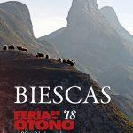 Feria d'o ganau de Biescas: una trobada con historia