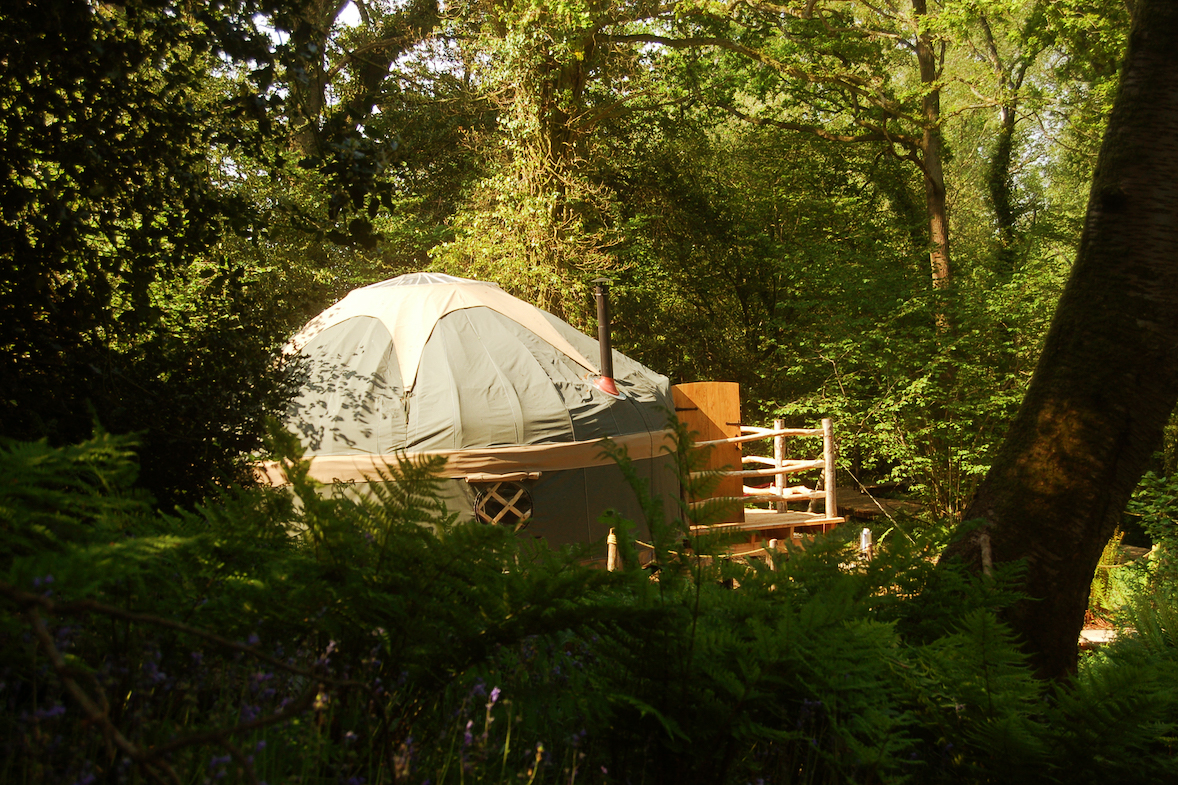 Poppet the Yurt