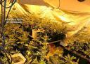 20140129 op green beret marihuana