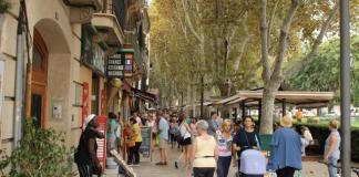 turistas centro Palma