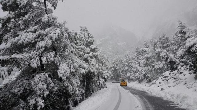 nieve serra 2