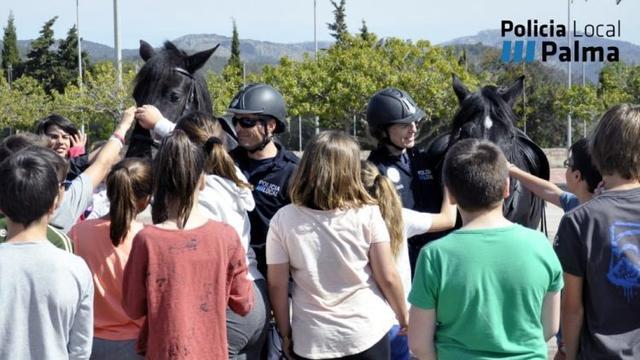 250417 policia local palma mona de pascua 3