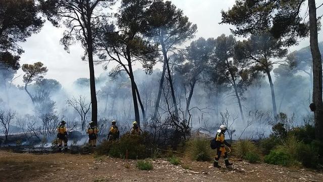 Las llamas han calcinado 0,6 hectáreas de pinar (Foto: IBANAT)
