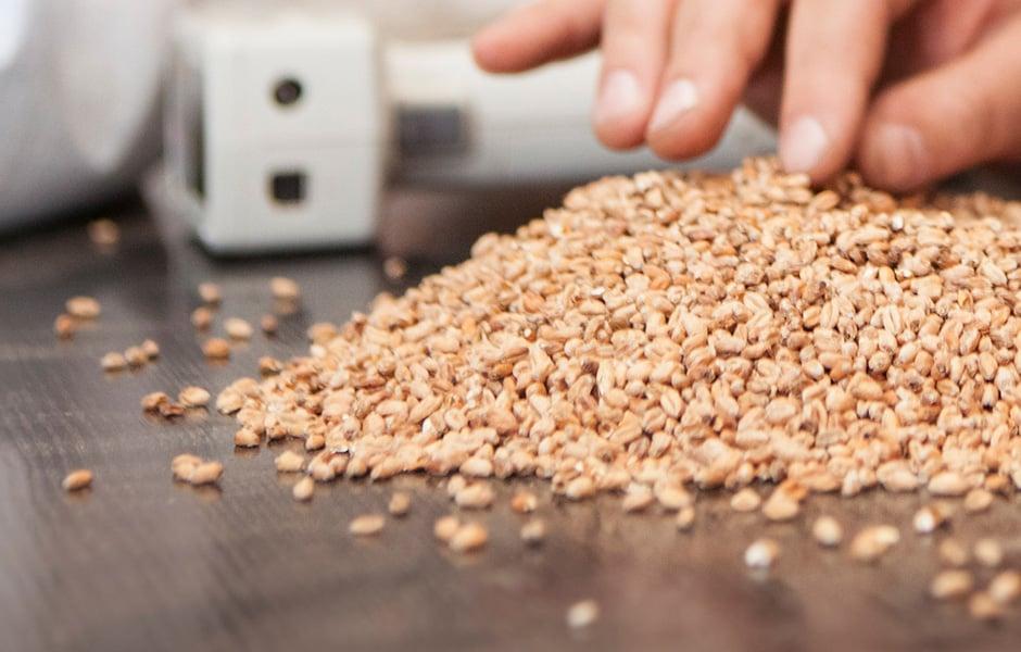 malzkategorie-2-other-cereals