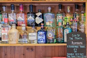 Drinks - photo of gins at the Malt Shovel Tavern