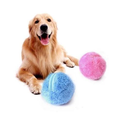 Bola Magica Pet Fun