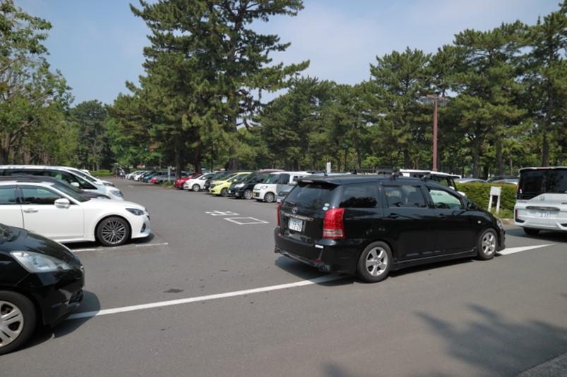 平塚市総合公園南駐車場わんぱく広場最寄