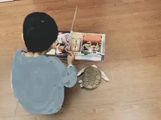 恐竜の本を見る息子