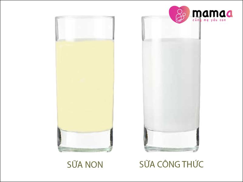 So sánh sữa non và sữa công thức