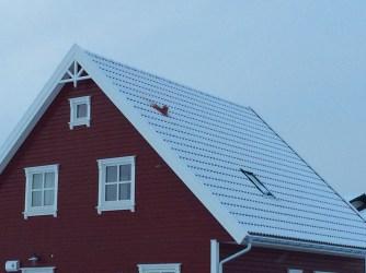 Rotes Haus im Winter 296