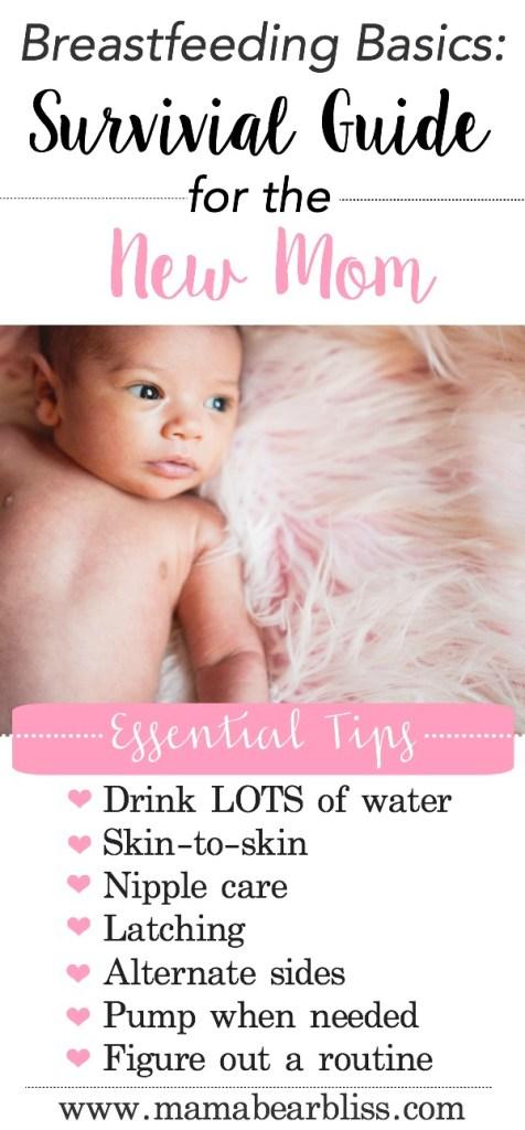 Breastfeeding Basics Survival Guide For The New Mom Mama Bear Bliss