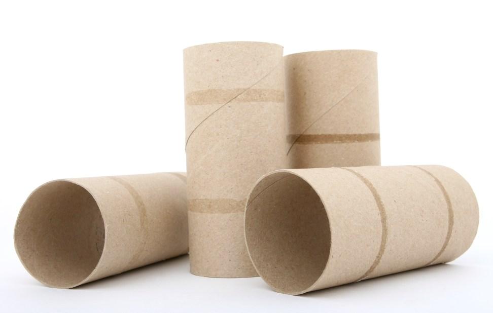 toilet paper rolls - weather