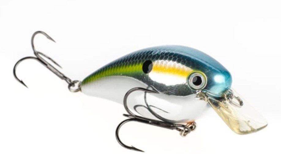 Lure for Father's Day