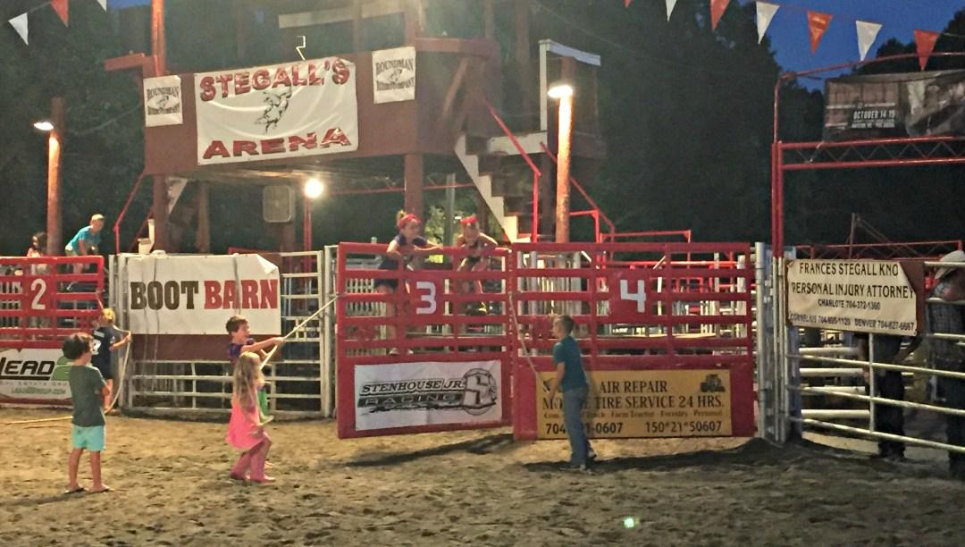 Rodeo Bull Kids