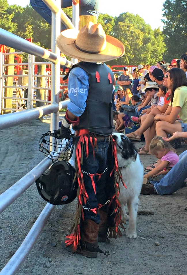 Little Cowboy - Rodeo