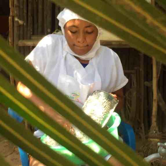 Rallado del coco