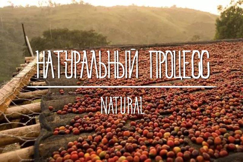 Сухой способ обработки кофе, натуральный процесс